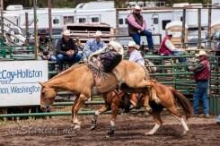 Ketchum Kalf Rodeo 7311
