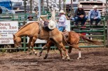 Ketchum Kalf Rodeo 7312