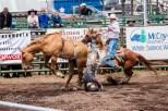Ketchum Kalf Rodeo 7314