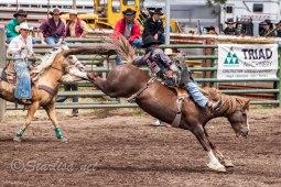 Ketchum Kalf Rodeo 7347