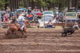 Ketchum Kalf Rodeo 7385