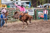 "Ketchum Kalf Rodeo 7532 ""Real Men wear Pink!"""