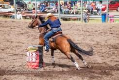 Ketchum Kalf Rodeo 7696