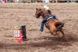 Ketchum Kalf Rodeo 7709
