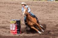 Ketchum Kalf Rodeo 7717