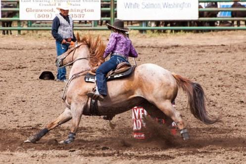 Ketchum Kalf Rodeo #7733