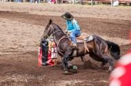 Ketchum Kalf Rodeo7819