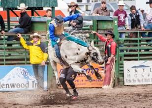 Ketchum Kalf Rodeo 7912