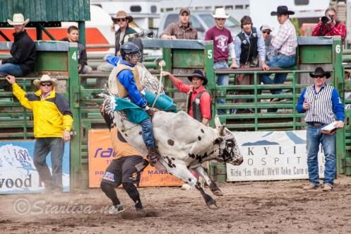 Ketchum Kalf Rodeo 7913