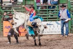 Ketchum Kalf Rodeo 7914