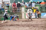 Ketchum Kalf Rodeo 7930