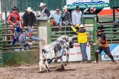Ketchum Kalf Rodeo 7929-2