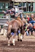 Ketchum Kalf Rodeo 7348-2