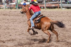 Ketchum Kalf Rodeo #7752