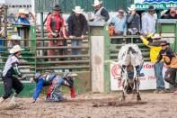 Ketchum Kalf Rodeo 7930-2
