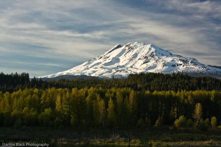 Mt.Adams_Spring-0367