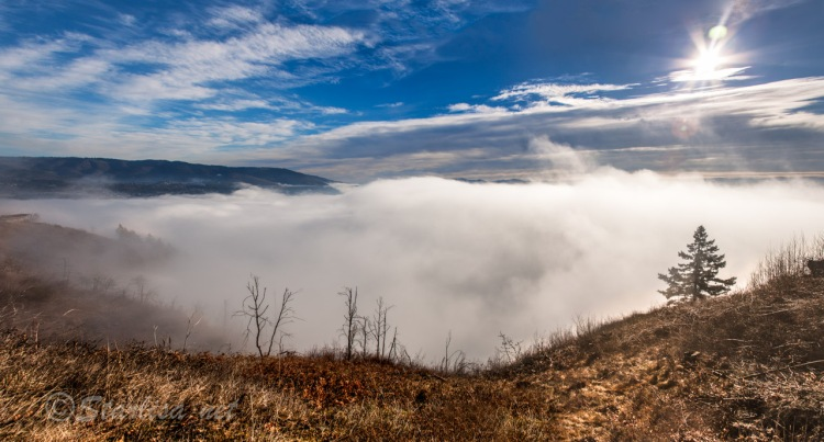 OverTheFog_GorgeMorning-0454