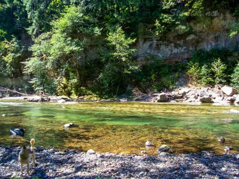 this was our wading pool and swimming hole when the water was higher.  We got water here for the campsite.  The green is heavily influenced by a smooth green shale on the river bottom.