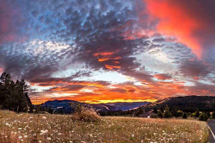 Sunset Galore-Pano_0154-2