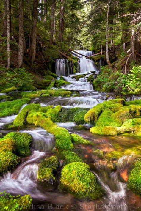 Big Spring Creek Falls