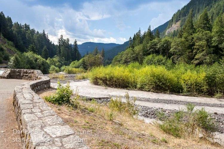 Road to Mount Rainer