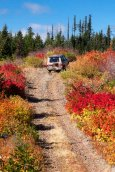 Cruising the High Roads, Cascade Foothill Autumn near Trout Lake, WA Oct. 1, 2014