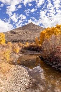 Idaho-Carey-Color-2