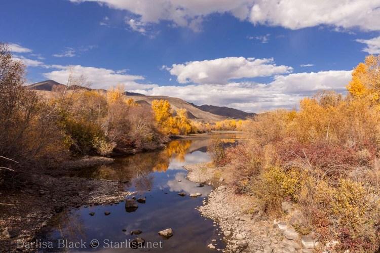 Idaho-Carey-Color-4