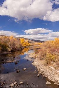 Idaho-Carey-Color-5