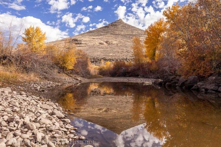 Idaho-Carey-Color-7