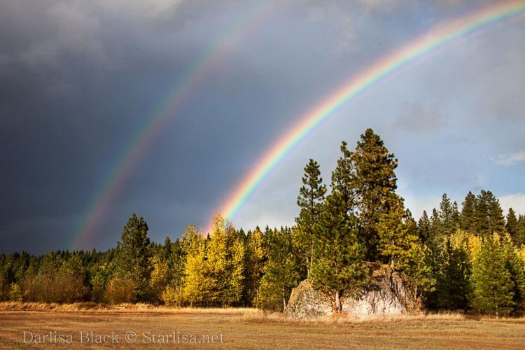 Meadow Rock Rainbow