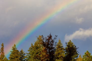 RainyDay-Rainbow_8961