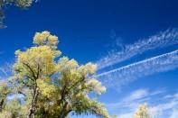 It was a gorgeous Fall day in Mount Carmel, Utah