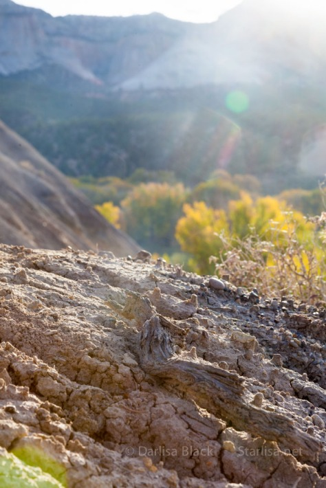 Utah-SugarKnoll-sunrise-7812