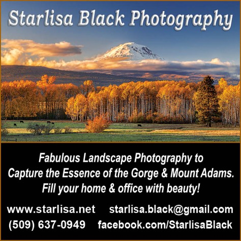 Starlisa Black Photography advertisement