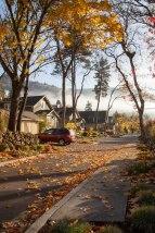 Autumn-Street-9780
