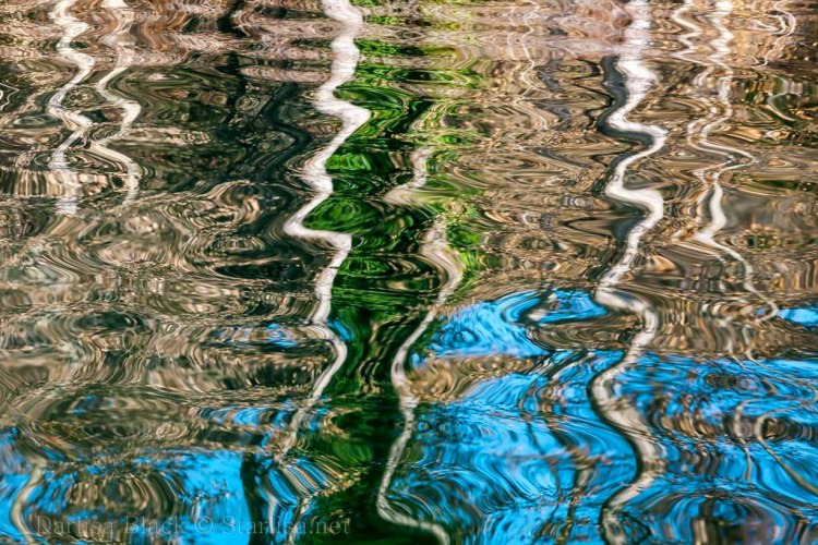 Reflections_2297