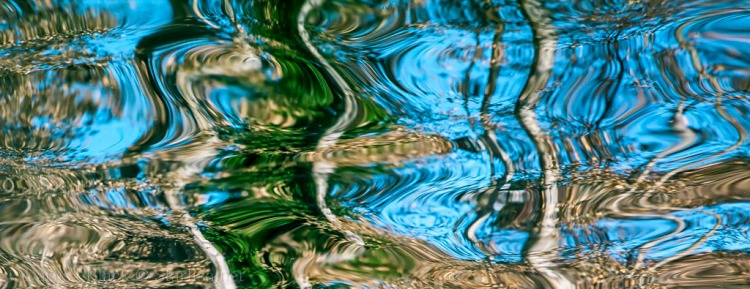 Reflections_2298