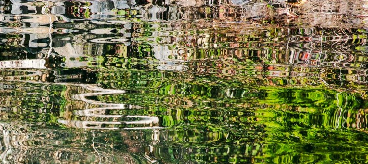 Reflections_2326