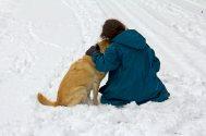 "Winter Card # 19 ""Best Friends"""