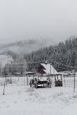 Snow&Ice-crop-3242
