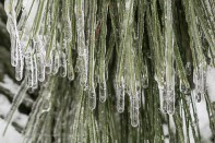 Snow&Ice-crop2-3265
