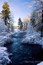 Winter Card #8