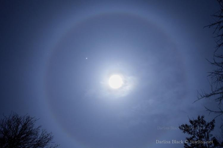 Moon-Halo-7440