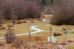 GlenwoodValley-runoff-7694