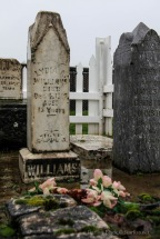 Pioneer-Cemetery_WS-7768