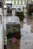 Pioneer-Cemetery_WS_7762