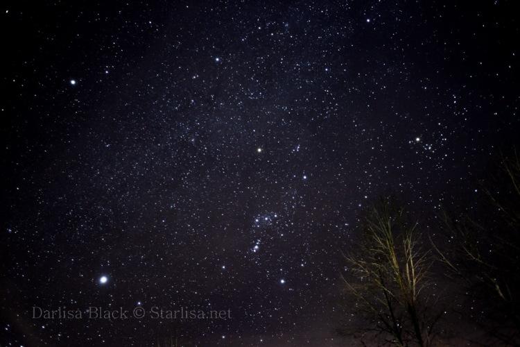 stars-Orion-0290