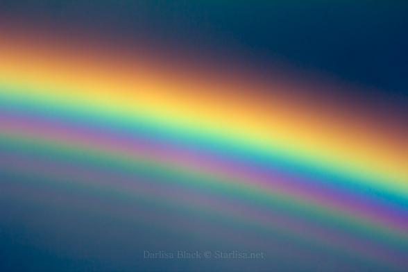 Rainbow_4841