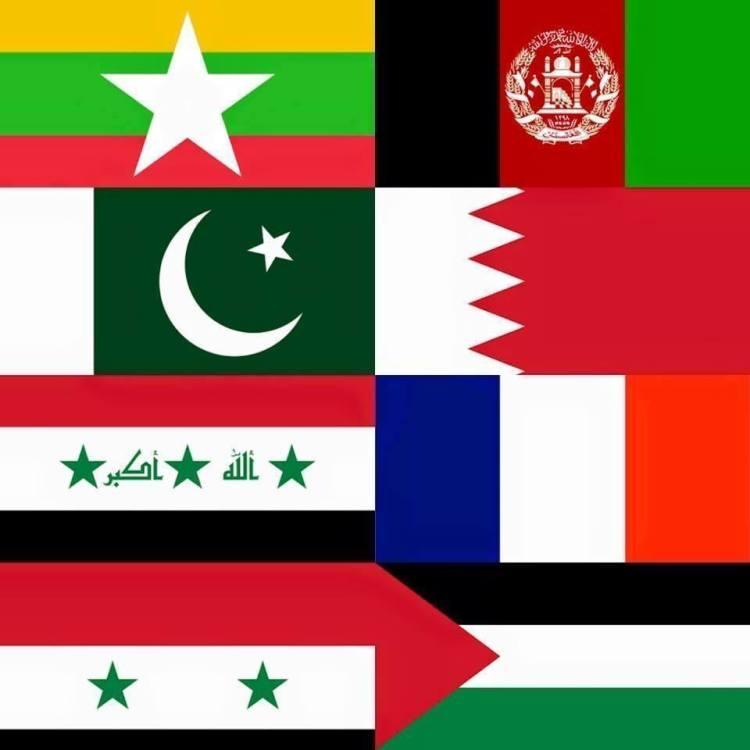 Flag-solidarity